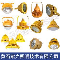 紫光GB8014LED防爆平台灯金属抛光车间灯具-型号-品牌-参数图片