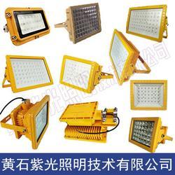 GB8040LED防爆灯,GB8040防爆LED泛光灯,GB8040紫光照明图片