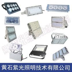 GF9041节能型LED泛光灯,GF9041投光灯,GF9041紫光照明图片