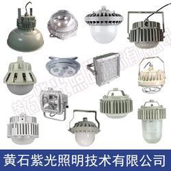 紫光照明GF9035三防灯具 GF9035LED泛光灯工厂灯图片