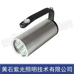 YJ1201警示灯-紫光YJ1201B固态手提式防爆探照灯图片