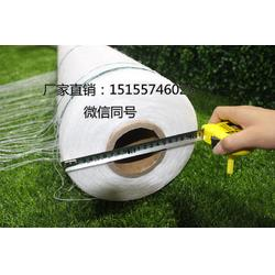 厂家直销圆捆机专用捆草网打包网打捆网图片