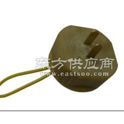 IEC60884-19 温升试验插头 温升插头 GB2099 厂家直供图片