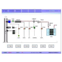 烟气在线监测系统_烟气在线监测_蓝光电子图片