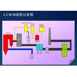 氨逃逸在线监测系统 氨逃逸 蓝光电子图片