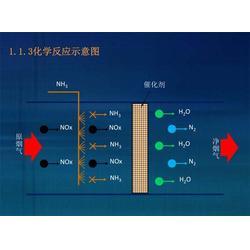 氨逃逸在线监测系统,蓝光电子,广东氨逃逸图片