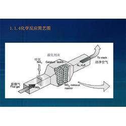 在线氨逃逸监测仪、蓝光电子、氨逃逸
