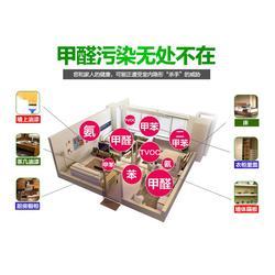 除甲醛公司、九江除甲醛、净美居环保科技公司图片