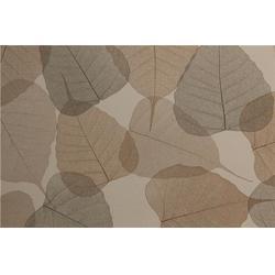泉金饰面板 多层实木饰面板-饰面板图片