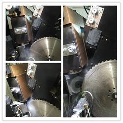 领邦机械 圆锯片磨齿机-磨齿机图片