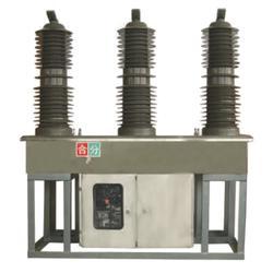 ZW8-民扬电气(在线咨询)ZW810KV双刀闸断路器图片