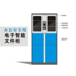 佛山铁柜-强固-铁柜订制图片