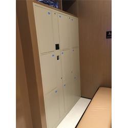 深圳存包柜 强固(在线咨询) 超市电子存包柜图片