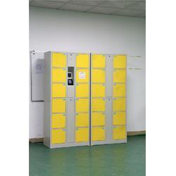 佛山存物柜,强固,超市电子存物柜图片