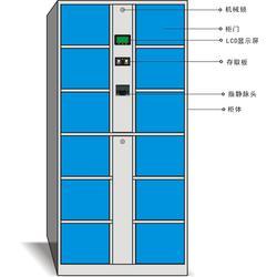 强固(多图) 办公文件柜厂 益阳文件柜图片