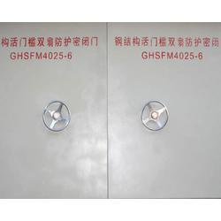 防护密闭门_电控防护密闭门_格瑞德民防工程(优质商家)图片