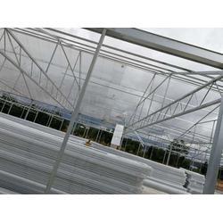 温室大棚信息-楚宏农业-温室大棚图片