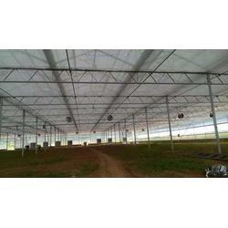 智能温室大棚搭建-楚宏农业(在线咨询)普洱温室大棚图片