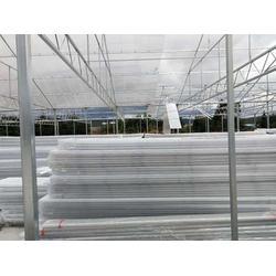 云南阳光板温室地址_楚宏农业(在线咨询)_云南阳光板温室图片