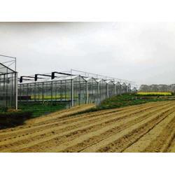 贵州多肉大棚-楚宏农业-贵州多肉大棚厂家图片