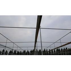 楚宏农业 贵州钢架温室大棚搭建-贵州钢架温室大棚图片