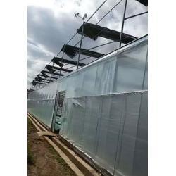安宁钢架温室大棚厂家电话-安宁钢架温室大棚-楚宏农业(查看)