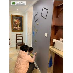 磁性绿板-磁善家(在线咨询)广州磁性绿板图片