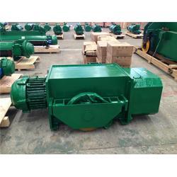 天津电动葫芦|10吨电动葫芦型号|天力重工(优质商家)图片