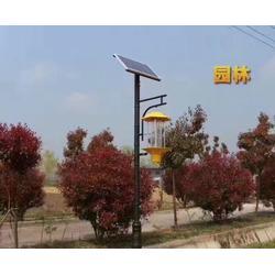 太阳能杀虫灯报价|安徽迈尔威(在线咨询)|合肥太阳能杀虫灯图片
