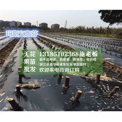 无花果哪个品种好、湖南无花果、(惠星农场)品种好,纯度高图片