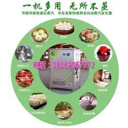 烘干窑蒸汽发生器型号|滨州烘干窑蒸汽发生器|招代理图片