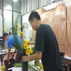 微景印象代理哪家好,沃柏居(在线咨询),广州微景印象代理图片