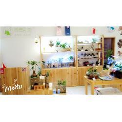 微景印象好口碑(多图)澳门微景印象教您如何开一个创意花店价格