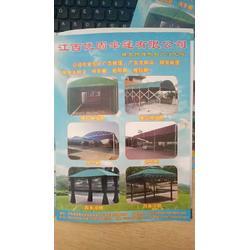太阳伞厂家、江西优固伞篷有限公司(在线咨询)、伞图片