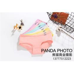 熊猫商业摄影,处理图片