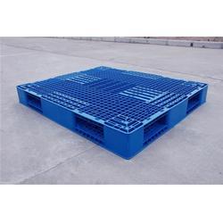注塑托盘 商河注塑托盘 天齐塑业品质保障