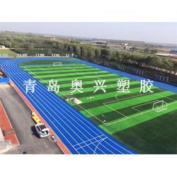 学校塑胶跑道、奥兴塑胶铺装(在线咨询)、青州塑胶跑道图片