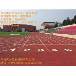 青州塑胶跑道、奥兴塑胶铺装(优质商家)、专业做塑胶跑道图片