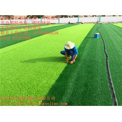 足球场人造草坪|奥兴塑胶铺装|足球场人造草坪厂家图片