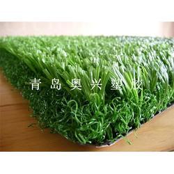 奥兴塑胶铺装(多图),足球场人造草坪施工厂家,足球场人造草坪图片