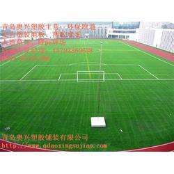 足球场人造草坪、奥兴塑胶铺装、青岛足球场人造草坪厂家图片