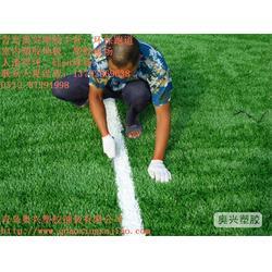 胶州幼儿园人造草坪厂家,幼儿园人造草坪,奥兴塑胶铺装(查看)图片