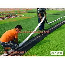 青岛幼儿园人造草坪|幼儿园人造草坪|奥兴塑胶铺装(多图)图片