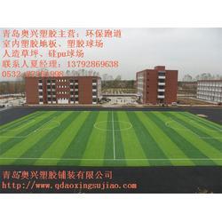龙口足球场人造草坪、奥兴塑胶铺装、足球场人造草坪铺装厂家图片