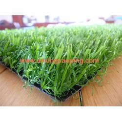 奥兴塑胶铺装(多图)|幼儿园人造草坪公司|潍坊幼儿园人造草坪图片