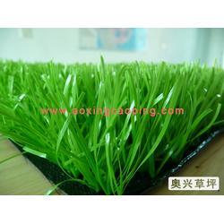 幼儿园人造草坪|济南幼儿园人造草坪|奥兴塑胶铺装(查看)图片