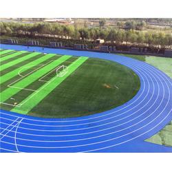 学校塑胶跑道厂家、德州塑胶跑道、奥兴塑胶铺装(多图)图片