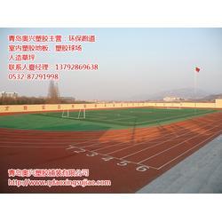 日照塑胶跑道 奥兴塑胶铺装(在线咨询) 塑胶跑道公司图片