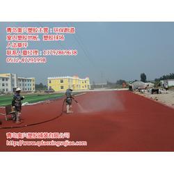 招远塑胶跑道、100米塑胶跑道、奥兴塑胶铺装(多图)图片