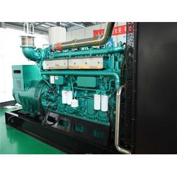 玉柴发电机组供应 巢湖玉柴发电机组 德曼动力图片